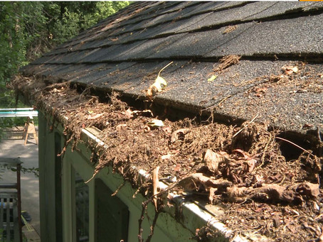 Fall Home Maintenance Task #2 - Clean Your Gutters