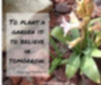 garden quote.jpeg
