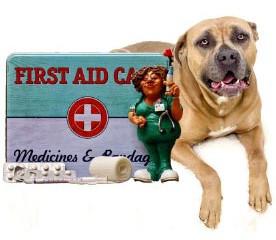 Erste Hilfe-Kurs: Symptome eines Notfalls
