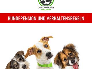 Update - Hundepension bleibt geöffnet.