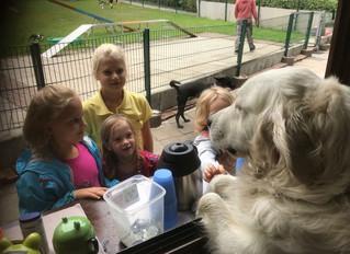 Impressionen Hund-Kind-Kurs Sommer 2018