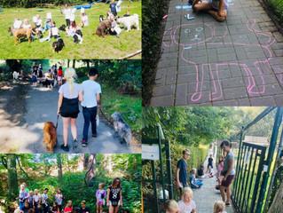 Einige Impressionen vom letzten Tag unseres Hund-Kind-Kurses