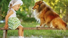 Hund-Kind-Kurs - noch wenige Plätze frei