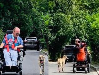 Ausbildung zum Behindertenbegleithund