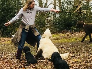 Der Hund-Kind-Kurs Ostern 2018 war ein voller Erfolg