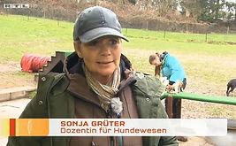 Sitz Platz Steh RTL Interview