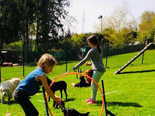 Hund-Kind-Kurs Sommer 2019