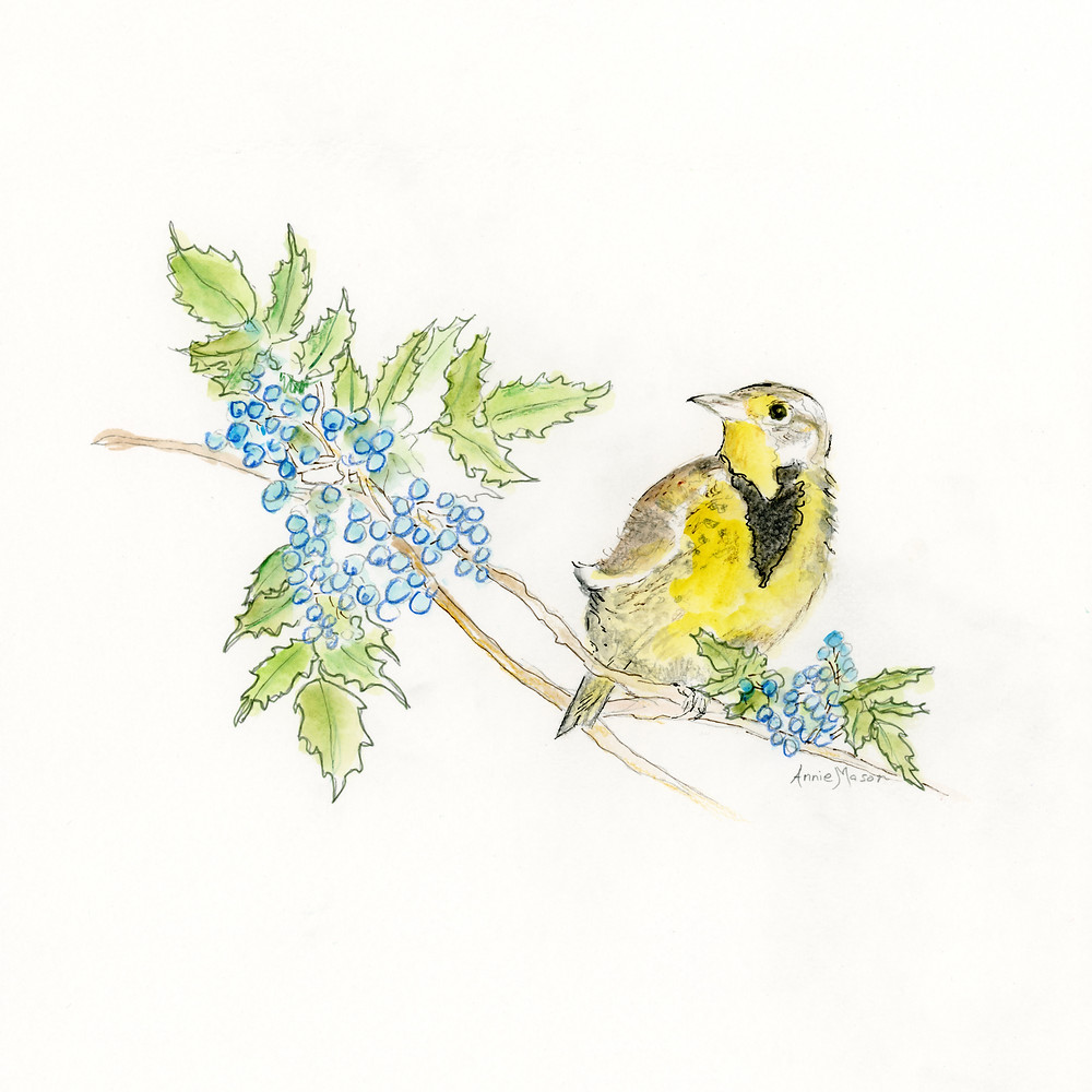 oregon bird flower meadowlark grapes watercolor