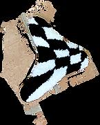 checkered blob 3.png