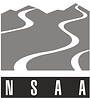 nsaa.png
