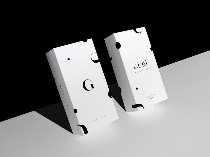 Behance_Guru_two_packages.jpg
