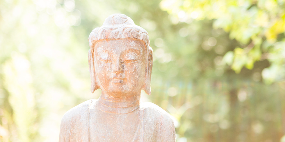 Online LIVE CEU Workshop - Mantra, Mudra, Pranayama, and Meditation
