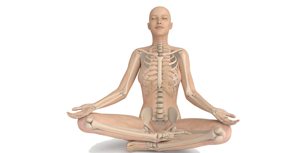 Every Body is Different…Your Yoga Poses May Need to Be Too!