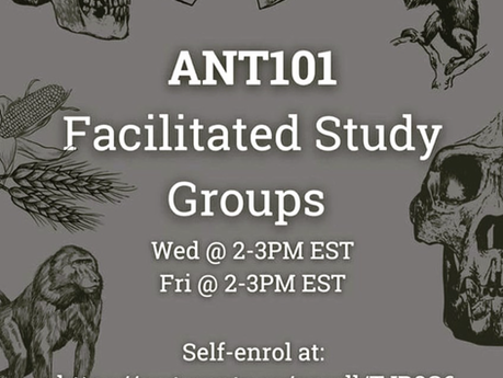 ANT 101 FSGS-Enroll today!