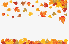 318-3182336_a-carpet-of-falling-leaves-t