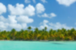 caribbean-island-coast-free image.jpg