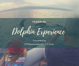TAORMINA DOLPHIN EXPERIENCE.jpg