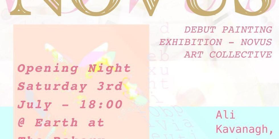 Novus Collective Fine Art Gallery