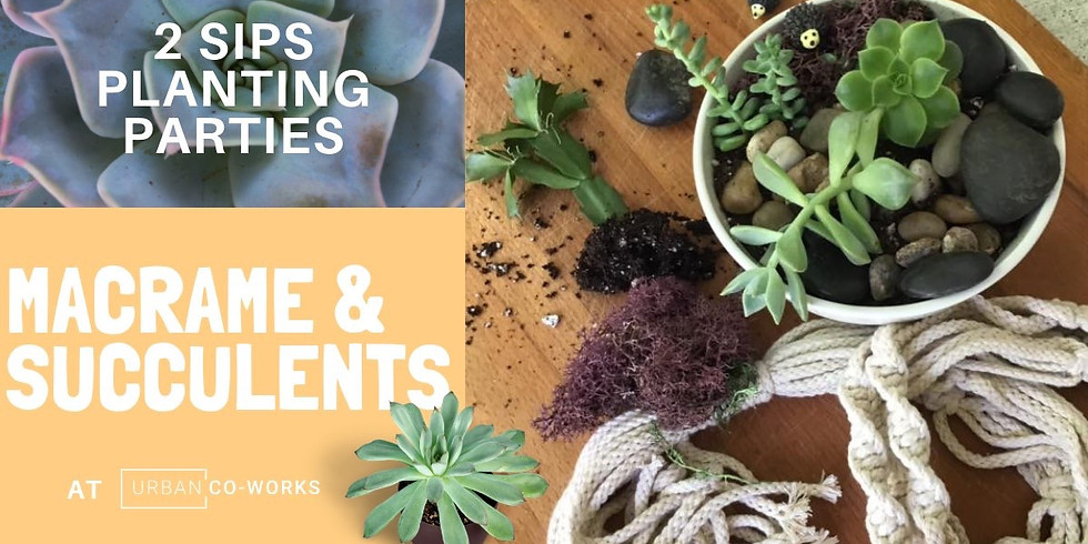 Urban Co-Works Macrame and succulents....Cancelled