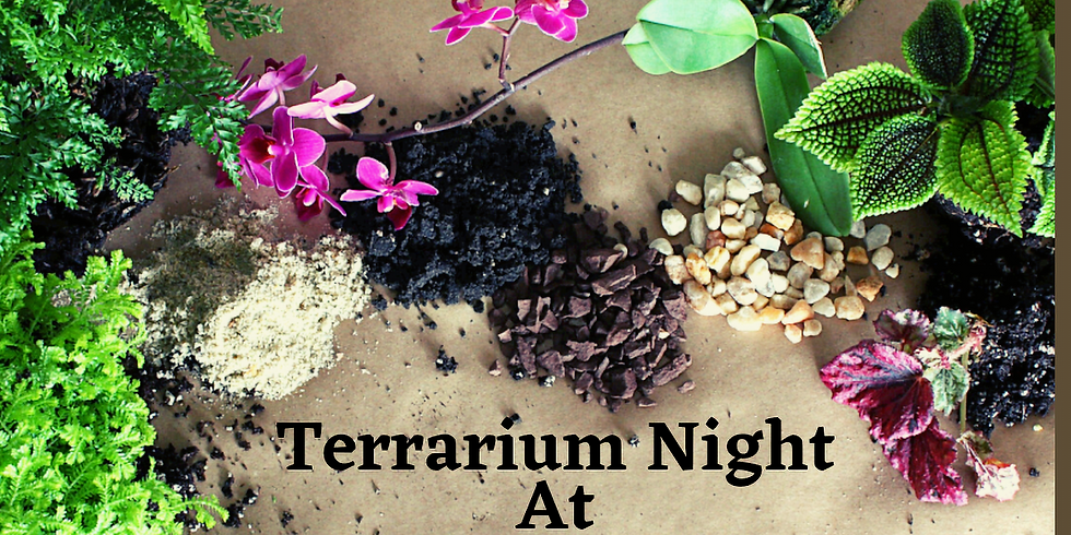 Terrarium Night At The Vineyard ~SOLD OUT