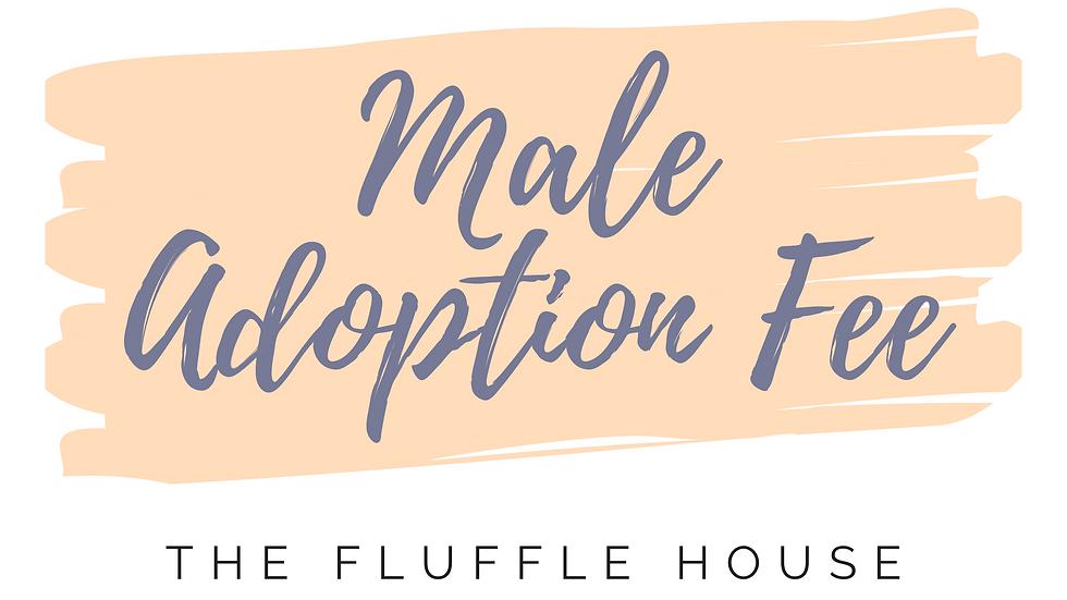 Male Adoption Fee