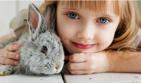 Things to Consider before Adopting a Bunny