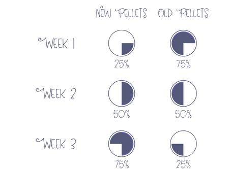 Pellet Transition Guide