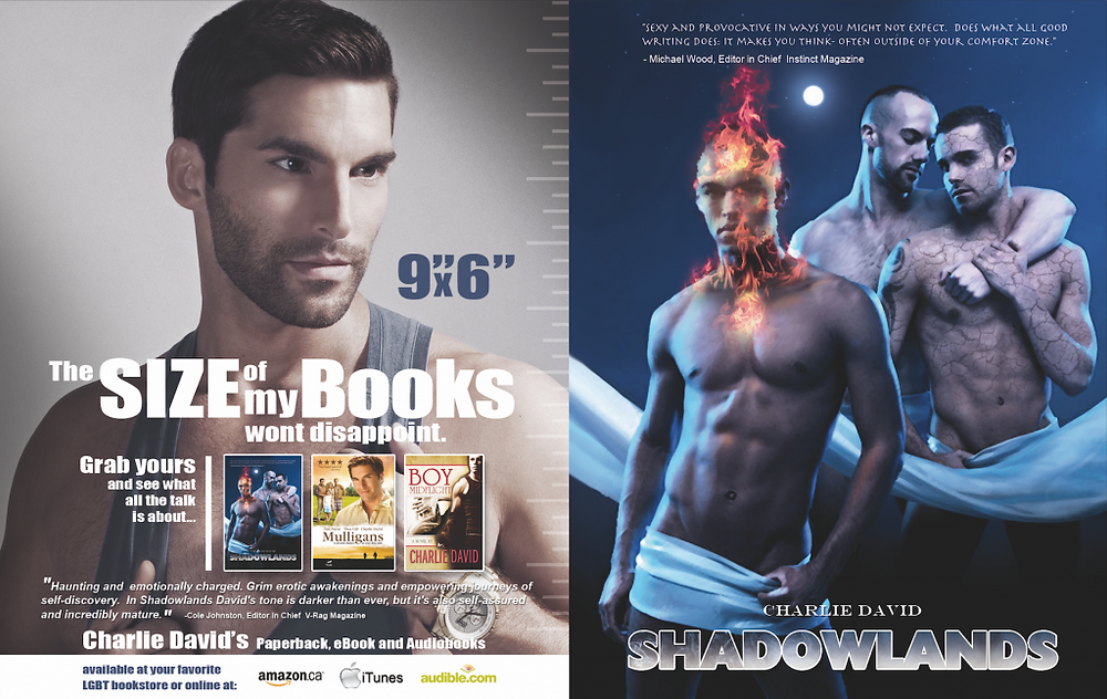 Shadowlands paperback
