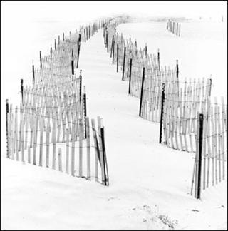 dune+fences