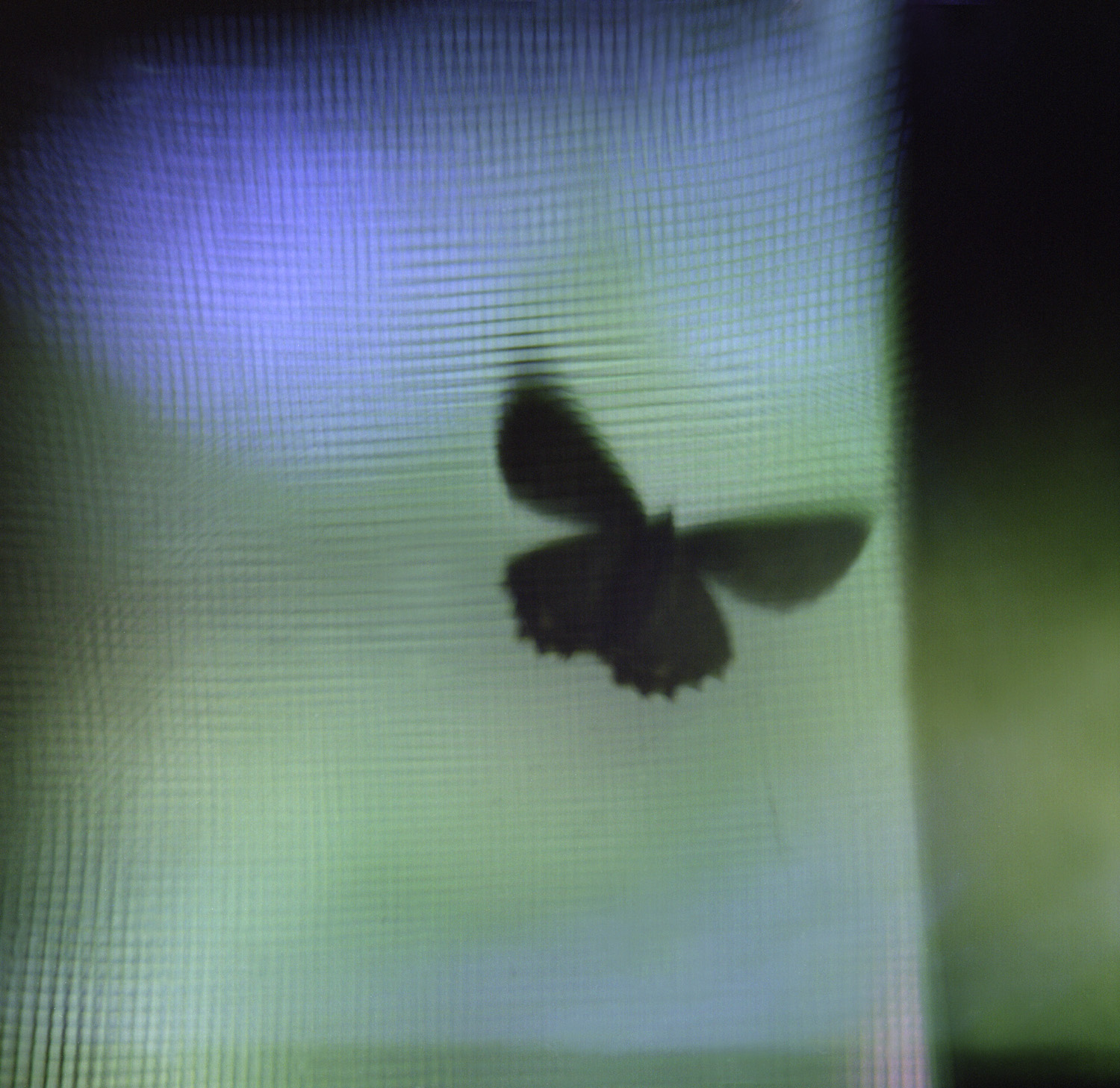 mothonscreen