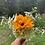 Thumbnail:  Garden Fresh Bouquet