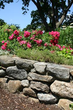 Fieldstone Perennial Garden