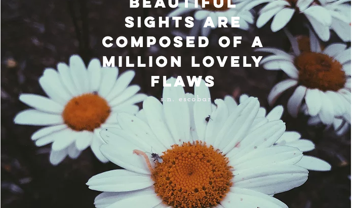 A Million Lovely Flaws