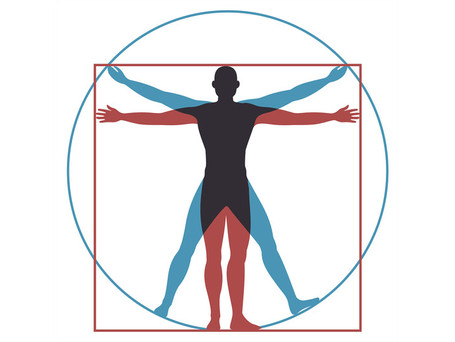 Research Study : Evaluation of body composition via markerless motion capture