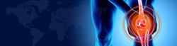 Website DARI health 2
