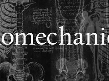 Biomechanics Of Building A Champion:                              Linear vs. Rotational Athletes