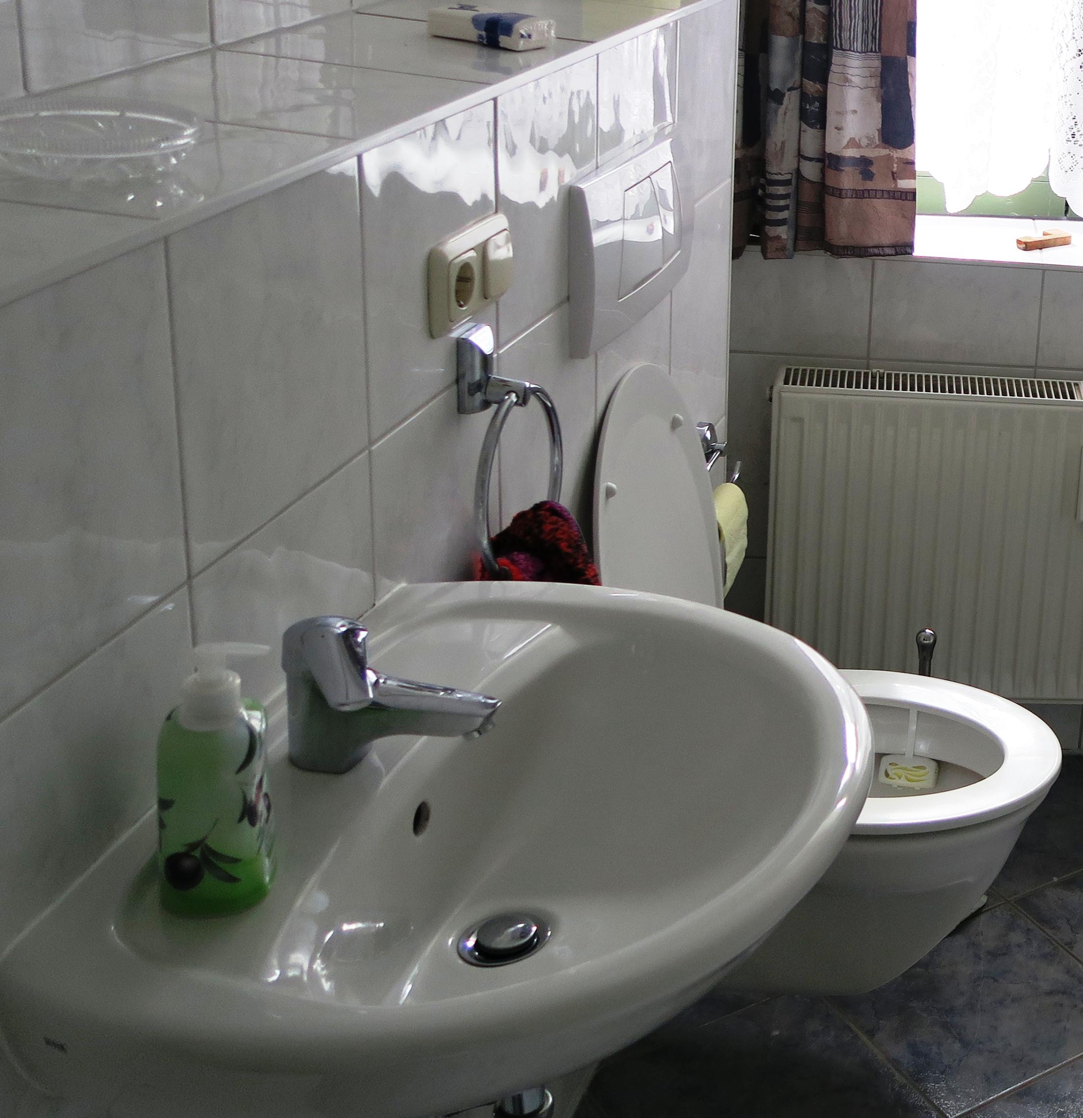 Waschbecken und WC Mittelklasse-Bad