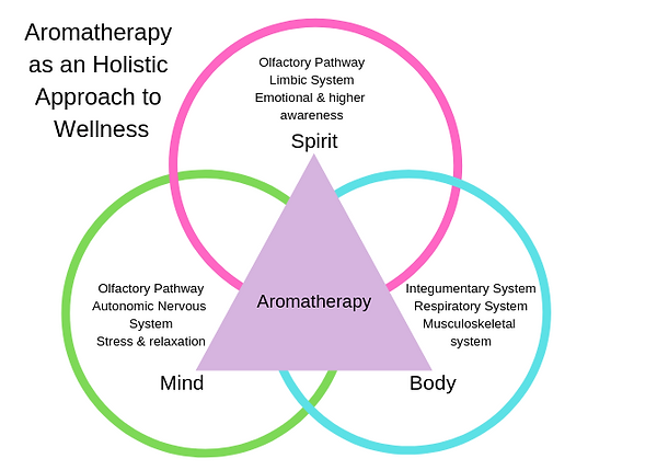 Aromatherapy is a Holistic Approach to W