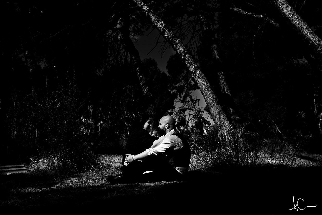 wildart photography