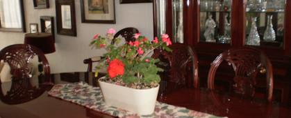 Jardinera 4