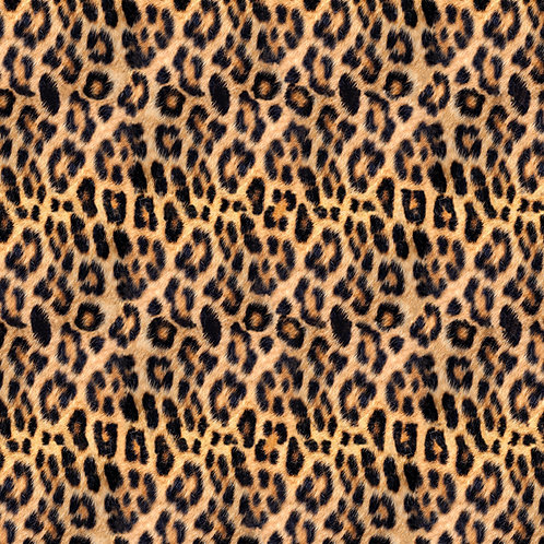 Call of the Wild - Leopard