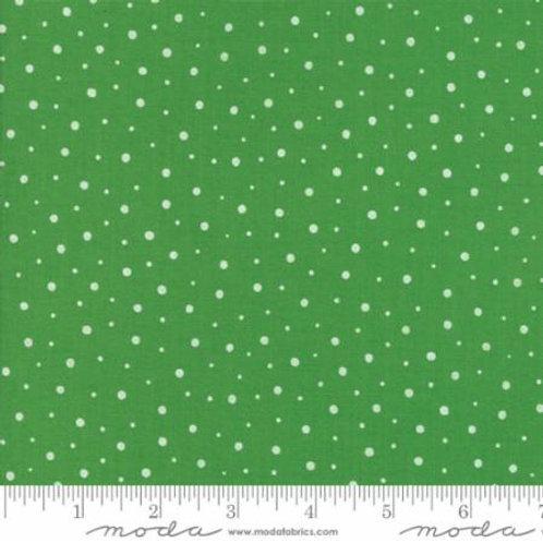 Red Dot Green Dash - Ever Green