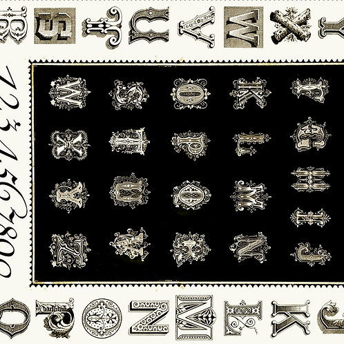 Letter Stitch - Black (Panel)