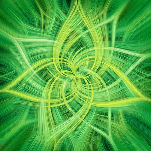 Dream Big Dance - Lime