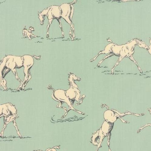 Purebred - Horses