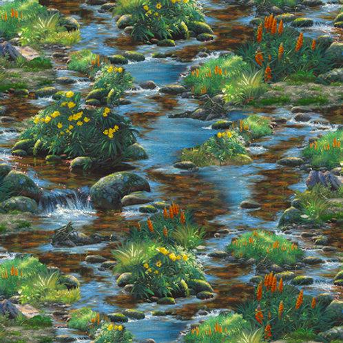 Natures Bears - Stream