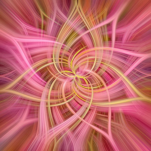 Dream Big Dance - Blooms
