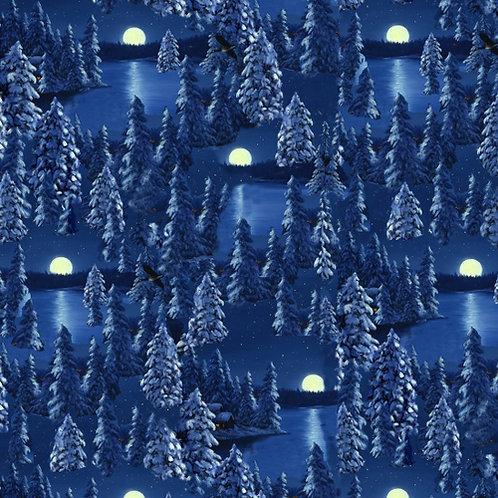 Let it Snow - Night