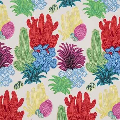 Desert Floor - Cactus