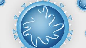 Informationen zum neuartigen Coronavirus / Covid-19